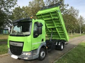 DAF (NL) LF 220 FA 4x2